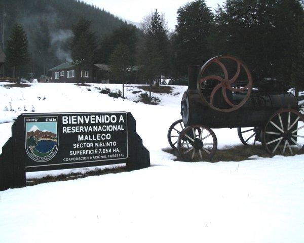 Reserva Forestal Malleco